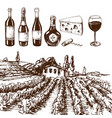 vintage winery wine production handmade draft vector image
