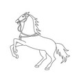 wild horse silhouette vector image vector image