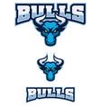 bull sport mascot vector image vector image