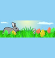 easter bunny on a meadow easter eggs vector image vector image