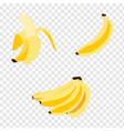 set bananas vector image
