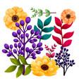 set botanic elements garden and wild foliage vector image