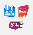 set day sale banner template vector image vector image