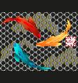 set of fish carp koi vector image