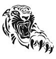 tiger 0003 anger and rage vector image vector image
