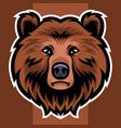 bear head mascot logo vector image vector image