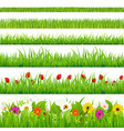 Big Grass And Flower Set vector image vector image