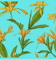 hand drawn flowers lilies on a white background vector image vector image