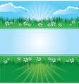 summer landscape banner vector image vector image
