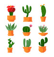 Cacti and succulents icons set cute green cartoon