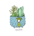 Cartoon cute succulents in pot vector image vector image