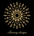 element for design template luxury golden vector image