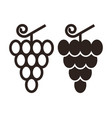 grapes icon vector image vector image