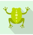 Green frog icon flat style vector image vector image