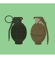 grenade isolated with green vector image vector image