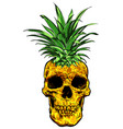 hand drawn skull fruit pineapple vector image vector image