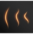 Set of realistic transparent fire flames on a vector image vector image