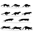 Set of running black cat silhouettes vector image