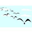 The Birds vector image vector image