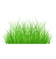 green grass border for summer landscape vector image