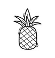 hand drawn doodle pineapple icon for backgrounds vector image vector image
