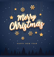 merry christmas text design vector image vector image