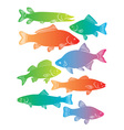 river fish vector image vector image