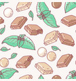 seamless pattern with hand drawn mint chocolate vector image vector image