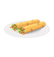 traditional mexican food - burrito vector image vector image