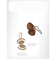 Two Beautiful Wooden Castanet with White Banner vector image vector image