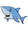 shark fish cartoon character vector image