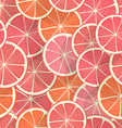 Citrus seamless background Grapefruit vector image vector image