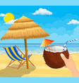 coconut with cold drink in hand vector image vector image