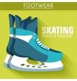 Flat sport skating background concept desig vector image