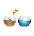 gold fish jumping out of the aquarium aquariums vector image vector image