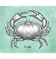 ink sketch of brown edible crab vector image vector image