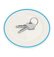 keys on a plate vector image vector image