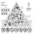 paleo diet pyramid on white line monochrome vector image vector image