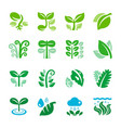 plant and leaf icon set vector image vector image