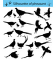 silhouette of pheasant vector image vector image