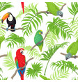 tropical birds and leaves pattern vector image vector image