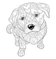 adult coloring bookpage a cute dog image vector image