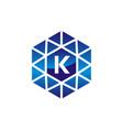 diamond initial k vector image vector image