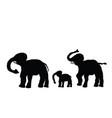 elephant family vector image