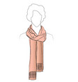 fashion accessory winter set women clothing vector image vector image