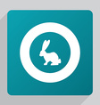 flat rabbit icon vector image