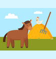 brown horse grazing on green lawn colorful banner vector image