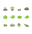 Green leaves flat icons set vector image vector image