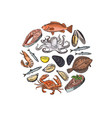 hand drawn seafood elements in form of vector image vector image