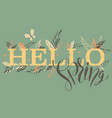 hello spring words with branches vector image vector image